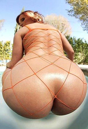 Big Ass Fishnet Porn Pictures